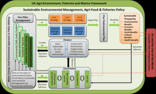 Making Brexit Work for the Environment and Livelihoods: A Stakeholder Informed Vision