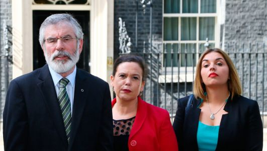 Mary Lou McDonald moved quickly to limit damage, but some activists are unhappy