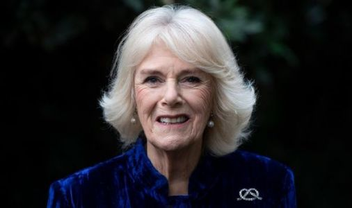 Duchess of Cornwall sports tartan with 'trusty black suede boots' for Commonwealth Day