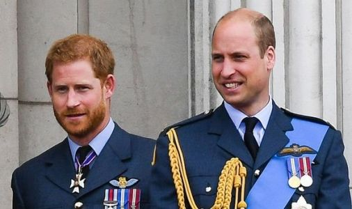 Royal heartbreak: Prince Harry urged to end 'feud' with Prince William to save monarchy