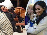 Meghan Markle reveals her dogs Pula and Guy have been a source of comfort