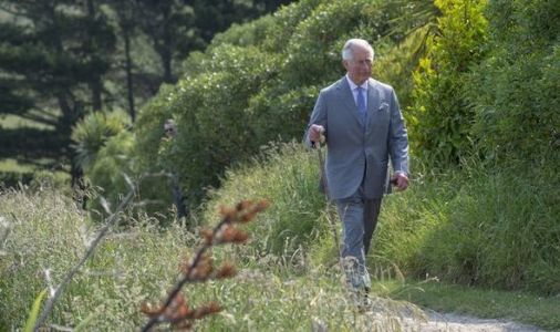 Prince Charles warned strategy change needed to secure popularity spike in Canada